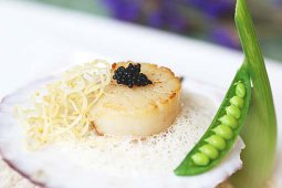 Baked Scallop with Vanilla Foam
