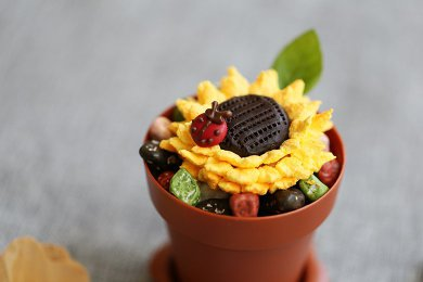 Chocolate and Fruity Flower Pot