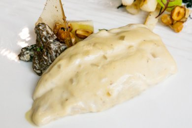 Slow Poached Turbot Fish Fillet with  Creamy Morilles Sauce & Hazelnut Chips
